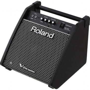 ROLAND PM-100 PERSONAL MONITOR 80W