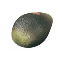 SHAKER REMO FRUIT - AVOCAT